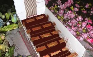 Art. 982 Stecchina gr.50 torrone tenero ricoperto cioccolato